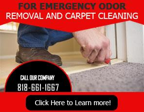 Office Carpet Cleaning  - Carpet Cleaning Reseda, CA